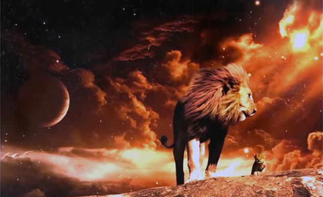 мужчина лев как понять что он влюблен